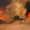 Sand IC Day 3 LA Fire at Placerita Cyn Natural Area 07-24-2016
