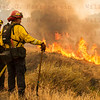 Sand IC Day 3 Cal Fire 241's watching spot on Placerita Cyn 07-24-2016