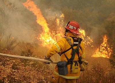Vegetation Fires