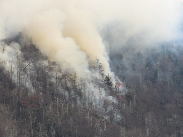 Fire at Chimney Tops