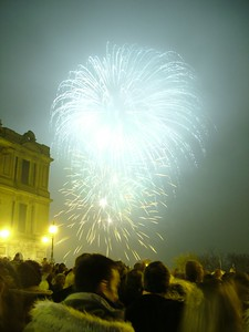2004_1106allypallyfireworks0044