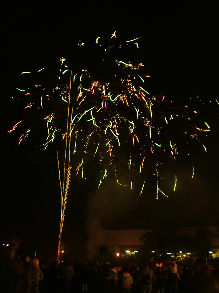 Bishop's Park Fireworks, London, 2006