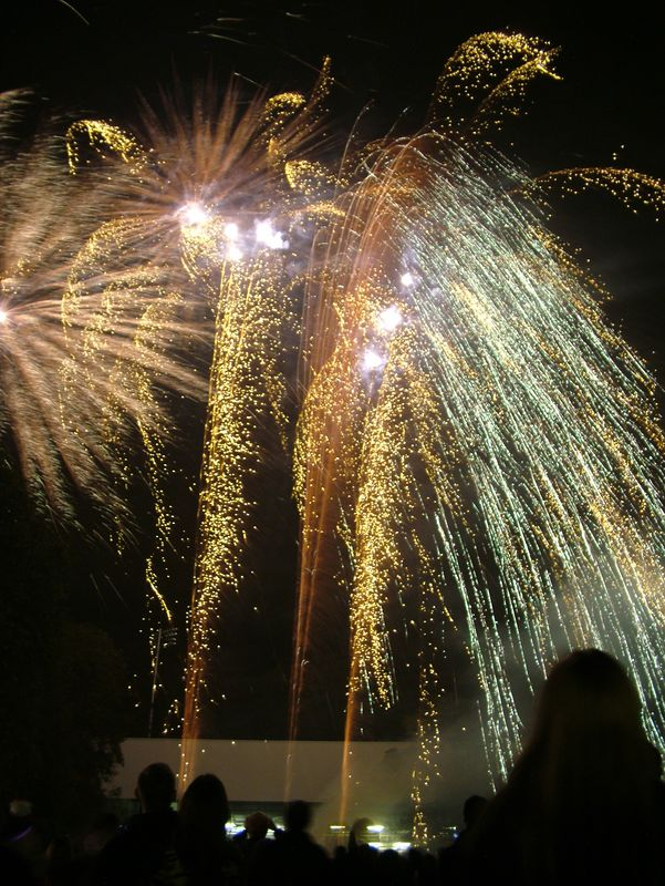 2004_1105putneyfireworks20023