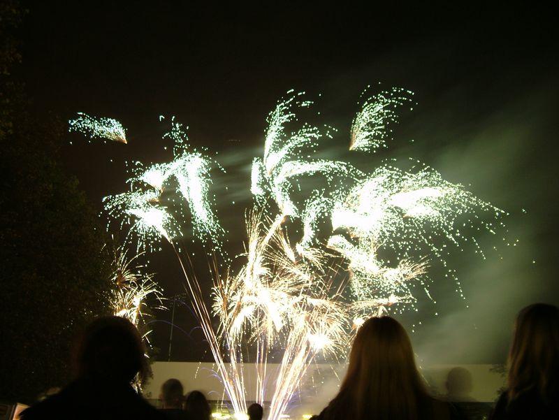 2004_1105putneyfireworks20012