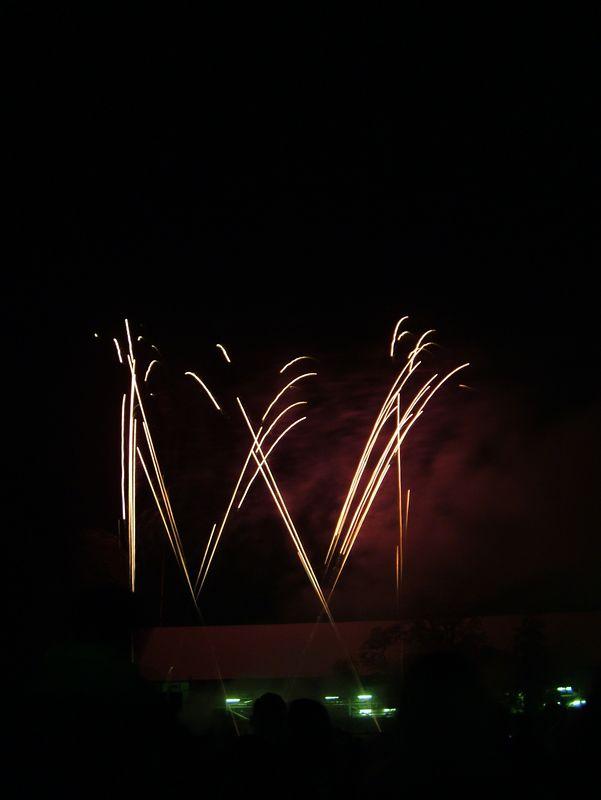 2004_1105putneyfireworks20062