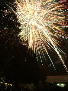 2004_1105putneyfireworks20005