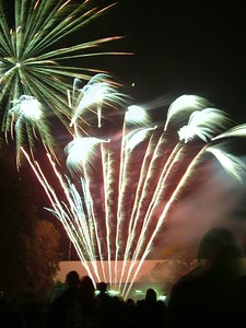 2004_1105putneyfireworks20035