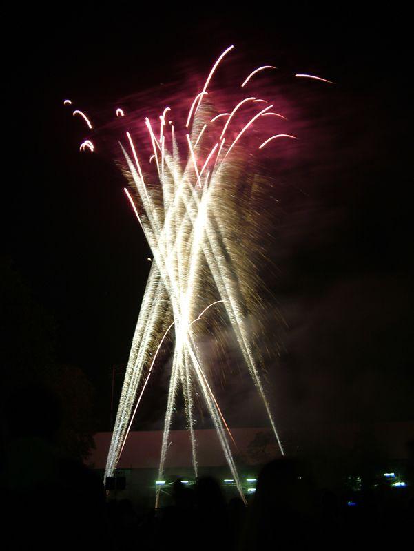 2004_1105putneyfireworks20060