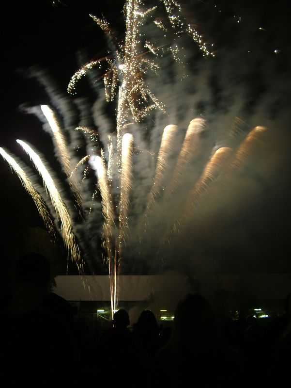 2004_1105putneyfireworks20049
