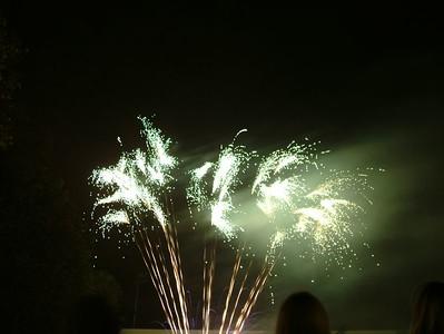 2004_1105putneyfireworks20011