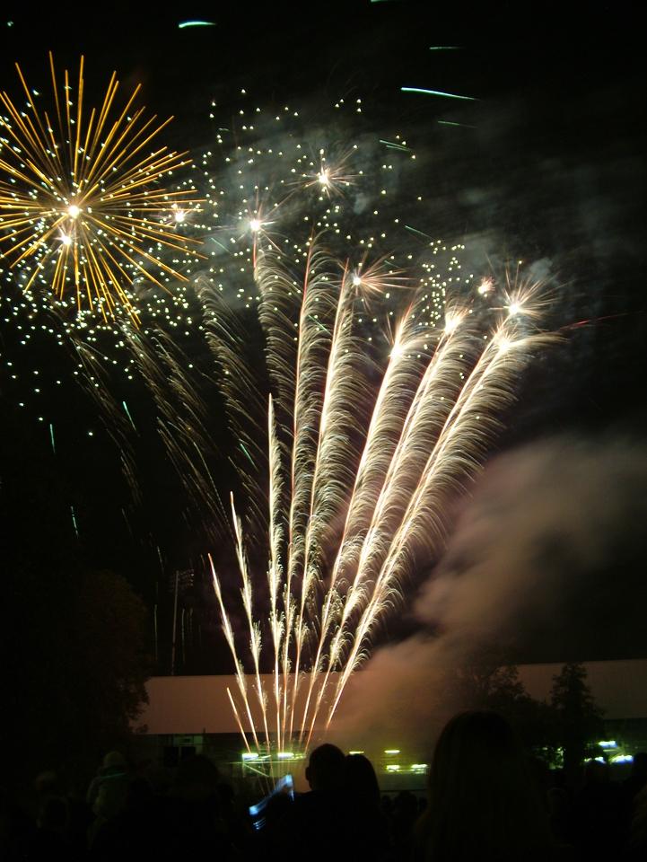 2004_1105putneyfireworks20073