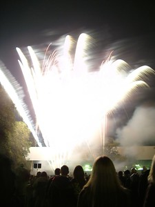 2004_1105putneyfireworks20046