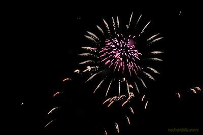 Paleo_2010_Firework_0001