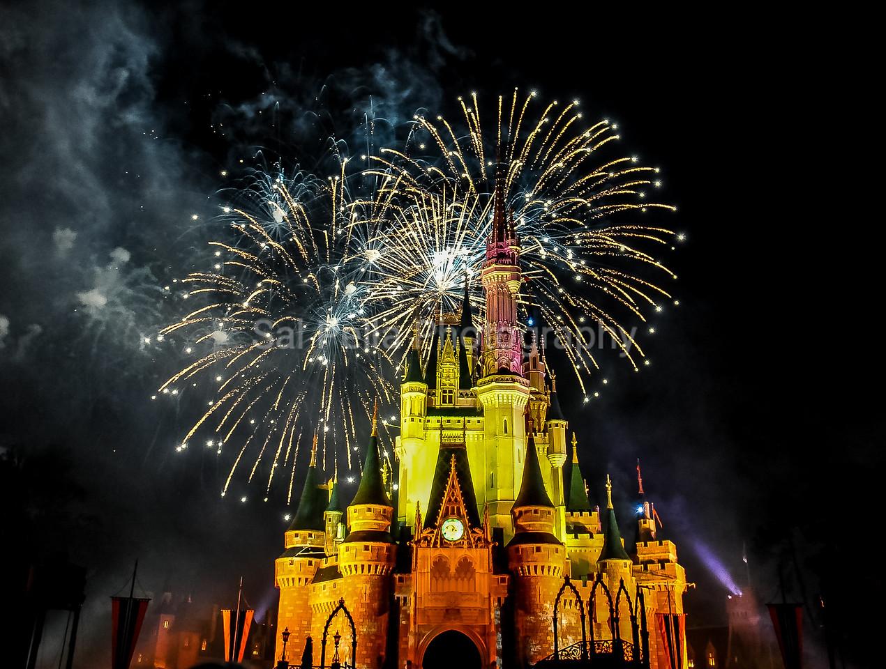 Disney World December 2011