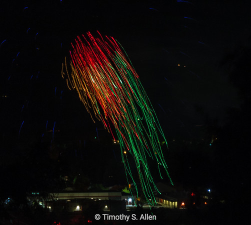 4th of July Celebration: Red, Gold and Green Jellyfish