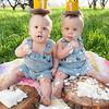 Johnston Twins 1st Birthday-32
