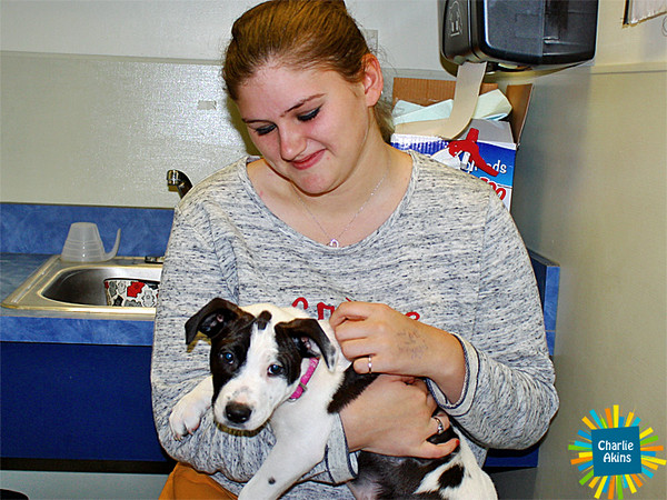 This pup is loving the attention at the Lynchburg Humane Society