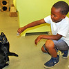 Playing with a cat at the Lynchburg Humane Society