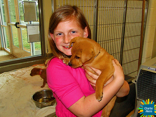 This pup is loving the attention at the Lynchburg Humane Society.