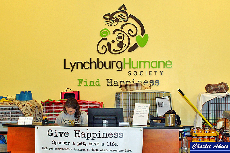 My first stop was the Lynchburg Humane Society.