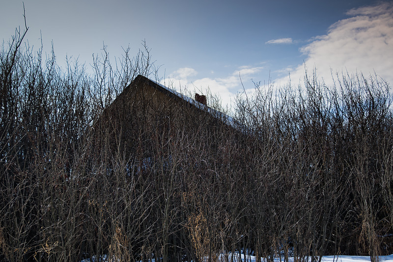 The Tangled Thicket Farmhouse
