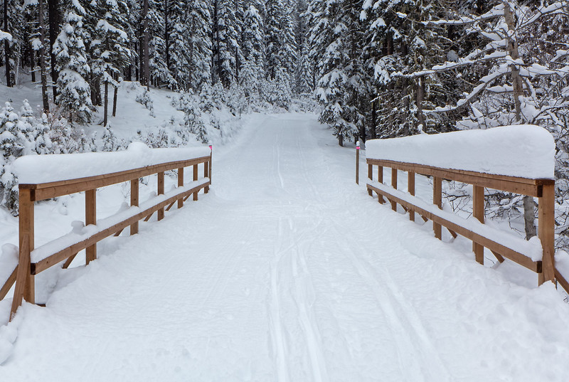 Look at all that snow on the new Iron Springs bridge!