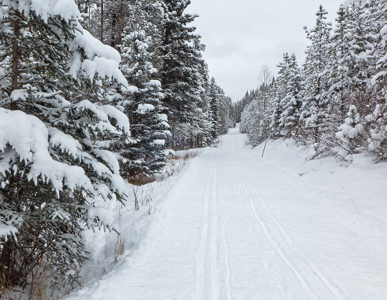 Typical conditions on Elbow and Iron Springs-skier tracked on a good roller packed base, with only a few thin spots.