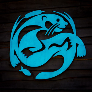 ADK Wildlife Center