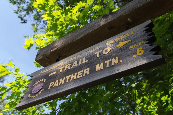 Panther Mountain