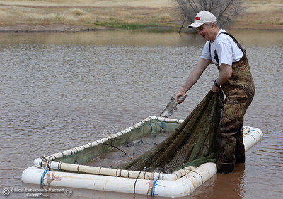 Media Relations Director Steve Carson holds one of the more than 7,000 lbs. of catfish planted in Horseshoe Lake for the 29th annual Hooked on Fishing Not on Drugs event which starts Saturday at 7:00 a.m. at Upper Bidwell Park in Chico, Calif.  (Bill Husa -- Enterprise-Record)