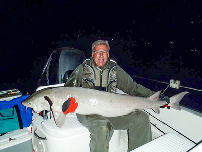 In the St. Clair River, there is a popular catch and release fishery for lake sturgeon.  As numbers grown in the Detroit River, there could be recreational fishing opportunities for lake sturgeon as well.