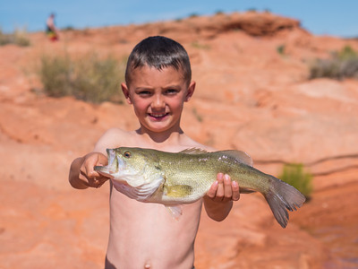 Pre-spawn bass at Sand Hollow