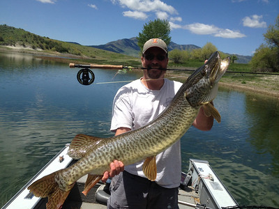 Paul Thompson caught and released this tiger muskie at Newton Reservoir using a fly rod. June, 2013.