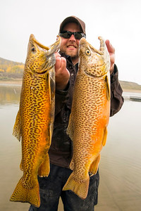 Aquatics professional Clavin Black with tiger trout out of Scofield. Photo taken 10-2013 by Michael Christensen.