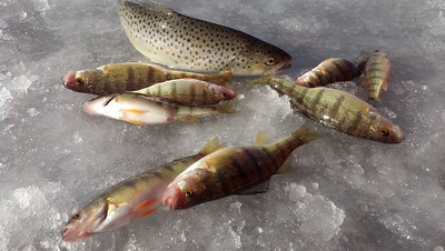 Ice fishing - Part 1
