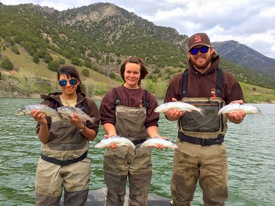 Wildlife technicians hold kokanee salmon caught during a gill net survey at Porcupine Reservoir in May, 2015.