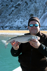 Biologist Scott Tolentino displays a nice bonneville whitefish  from Bear Lake.  These whitefish are found nowhere else in the world.  Photo taken 12-4-06 by Phil Douglass, Utah Division of Wildlife Resources