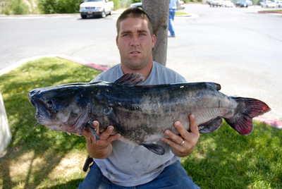Clifton Elliot of Price holds the 25 lb. catfish he caught at Huntington North Reservoir on 7-27-07.  By Brent Stettler, Utah Division of Wildlife Resources