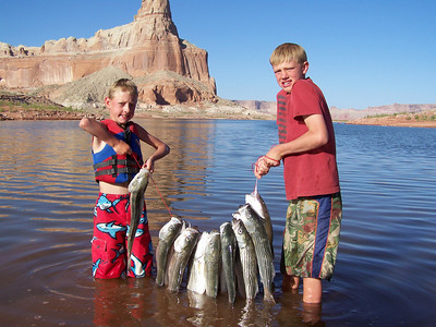 Steffen (L) and Skyler (R) Koury of Show Low AZ hold up their catch of stripers from Lake Powell on 4-15-06.  By Utah Division of Wildlife Resources.