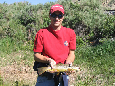 Jeff Pugliese of Carbon County with brown trout caught at Lower Fish Creek on 6-21-07. Photo by Brent Stettler, Utah Division of Wildlife Resources.