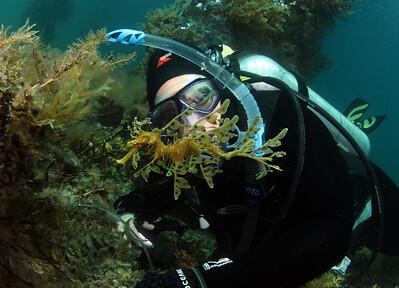 Sammii with Leafy Seadragon, Phycodurus eques
