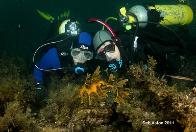 Tricia Culshaw and Audrey Smith with Leafy Seadragon, Phycodurus eques