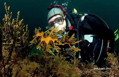Audrey Smith with Leafy Seadragon, Phycodurus eques