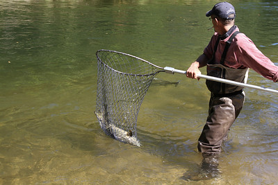 Salmon Fishing 2011 - Day 2