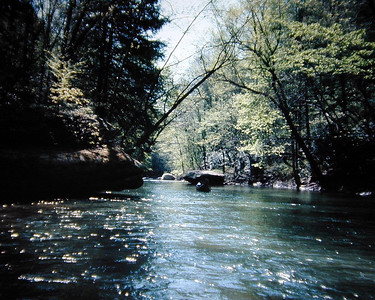 Cumberland River Tributary