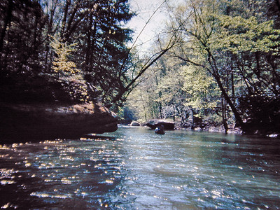 Jellico Creek near the Cumberland River