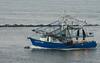 Boats-LuckOneDolphin