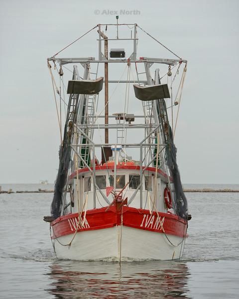 Boats-Ivana-BH
