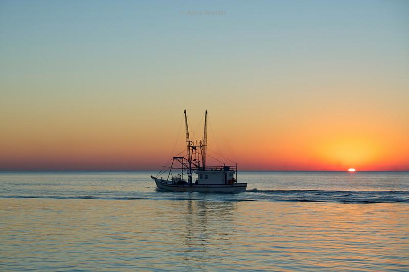Boats-MissAmber