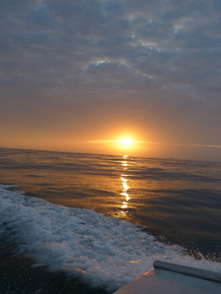 """I almost expected to see the morning equivalent of the """"green flash"""" (if there is such a thing)"""